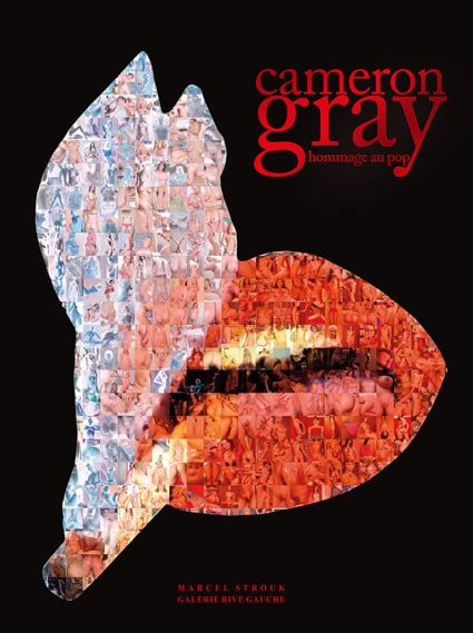 <b>Cameron Grey </b><br>Hommage au pop